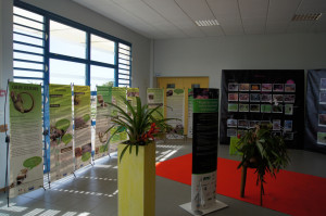 Picture 4.  Education exhibit on Iguana delicatissima.  Photo by D. Laffitte, ONCFS.